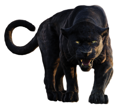 Disney's Bagheera - Transparent Background! by Camo-Flauge