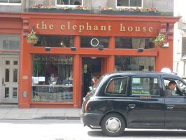 The Elephant House by WorldSerpent