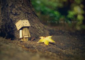 Nothing Lasts Forever by RyanMichael