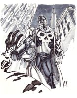 Punisher-WEB by StephaneRoux
