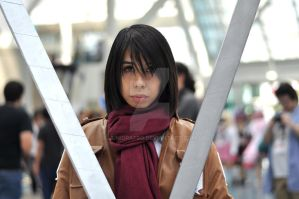 Anime Expo 2013 : Faces of Cosplay_0412 by JuniorAfro
