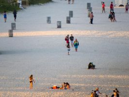 Miami Beach close up by zootnik