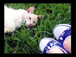 butters and my shoes. by Xx-rawr-xX