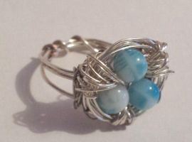 Birds Nest Ring by LoveDoodleBug