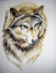 Wolf Tutorial 8 by HouseofChabrier