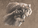 Wolves by ISHAWEE