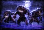 Werewolves at Night by Jumpersart