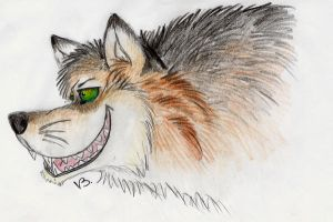Wolf smiling by Vlcek