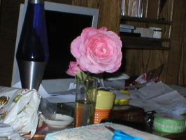 Ze Flower in the Mess by ClineVanMark