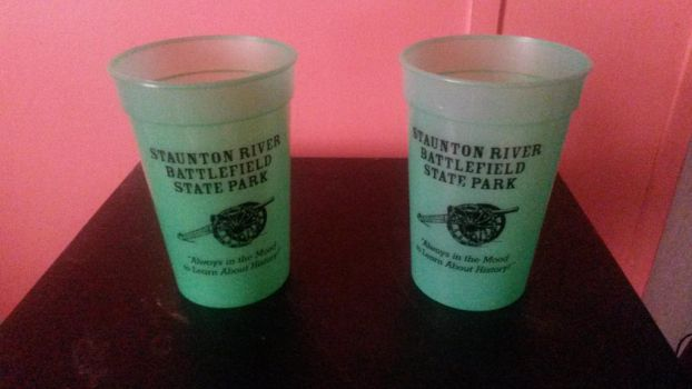 SRB State Park - Color Changing Cup(s) by GreenMint4265