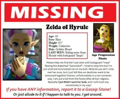 Missing- Zelda by stormthief19