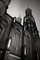 Cathedral in the fog by anoxado