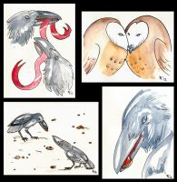 Raven and Owl Greeting Cards by Verdego
