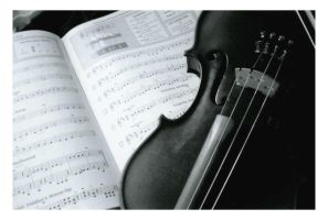 violin by jamarante