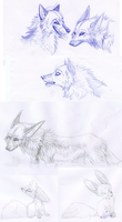 Sketch Dump canins by hecatehell