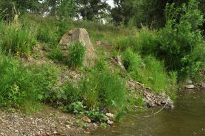 Large stone in the grass by Tumana-stock