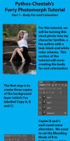 Furry Photomorph Tutorial: Part I by pythos-cheetah
