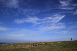 Picture of the day: Under the blue sky by shari81