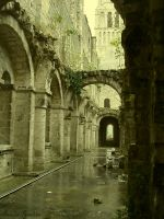 Abbaye de Jumieges X by byAmelie