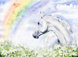 Rainbow horse by VeronikaFrizz