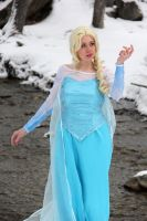The Cold Never Bothered me Anyway by Pompay