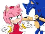 SONIC AND AMY? by GaruGiroSonicShadow