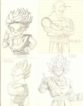 DBZ favourite characters by carmillad