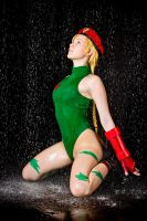 ~Cammy White by OniksiyaSofinikum