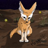 Fennec Fox and Fireflies by Malakhite