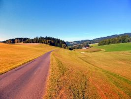 Country road with scenery by patrickjobst