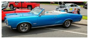 A Blue GTO Convertible by TheMan268