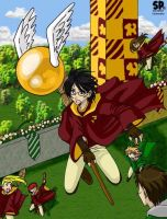 Old Quidditch pic by sockie
