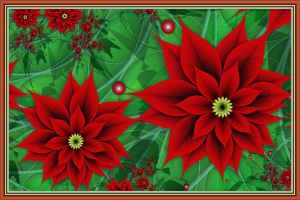 Christmas Poinsettias 2016 by Shadoweddancer