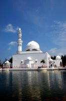 white mosque 2 by UNITIT