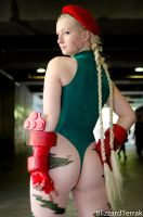 AX12 - Cammy White by BlizzardTerrak