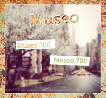 Museo by YourSource