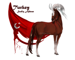 Horse Hetalia:  Turkey by MUSONART