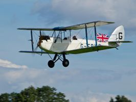 DH60X Moth Old Warden by davepphotographer