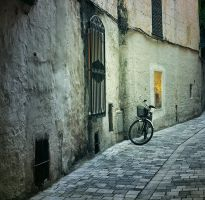 THE BICYCLE .: by gingado
