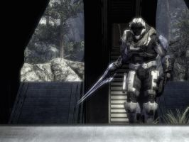 Halo Reach request: angel by purpledragon104