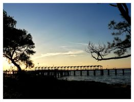 Jekyll Island 004 by sees2moons