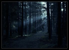 Into the trees by darkgreenchaos