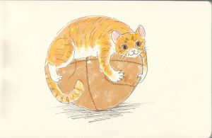 Basketball Cat by kimikiti