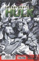 Hulk blank cover by MichaelDooney