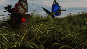 Butterflies by fractal2cry