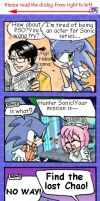 Sonic In PSO by tikal