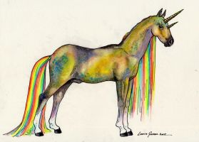 Multicolour Unicorn by Leeuwtje