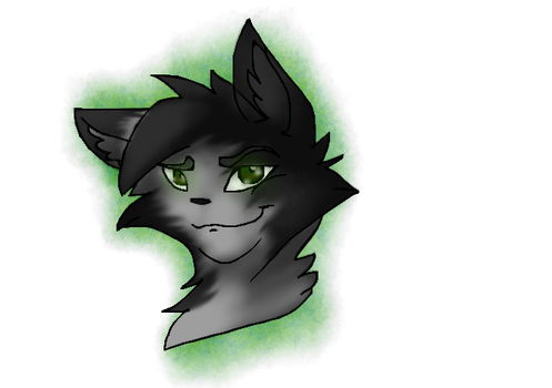 Graytail RE-DRAW by nightsoulxYT