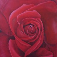 Red, Red Rose by Artman225