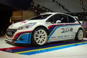 Paris 2012: Peugeot 208 Type R5 by randomlurker